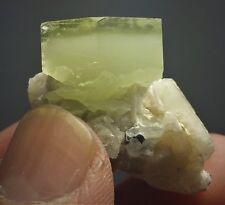 Top Lester Fully Terminated Multi Color Aquamarine Crystal On Albite Matrix