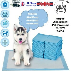 GABZ Absorbent Large Size Leak Proof Puppy Training Pads Pee Wee Pet Toilet Mats