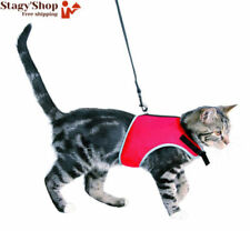 Harnais pour chats avec Laisse Trixie Soft