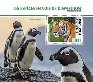 Togo Wild Animals Stamps 2020 MNH Endangered Species Tigers Penguins Birds 1v SS