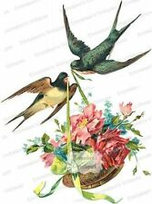 Vintage Image Victorian Shabby Birds and Flower Baskets Waterslide Decals Bir818