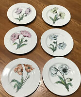 "Vintage Taste  Setter Collection Flower Plates Set Of 6 - 7 3/4"" Plates"