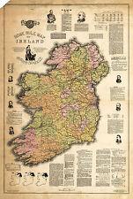1893 Home Rule Map Ireland Jas Ballance Political Irish Vintage History Poster