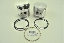 ITM Engine Components RY2516-020 Piston With Rings