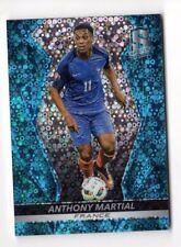 Panini Football Trading Cards France