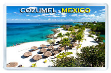 COZUMEL MEXICO FRIDGE MAGNET SOUVENIR IMAN NEVERA