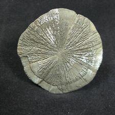 wunderschöne Pyritsonne zu einem günstigen Preis  710