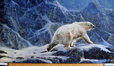 "24.5"" X 44"" Panel Polar Bear Arctic Iceberg Nature Digital Cotton Fabric D765.21"