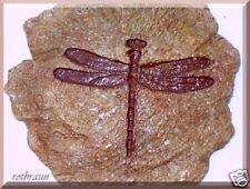 TRITTSTEINE TRITTSTEIN Trittplatte Libelle rotbraun Stein Garten Haus Teich See