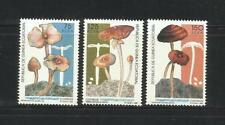GUINEA ECUATORIAL. Año: 1992. Tema: SETAS AUTOCTONAS.