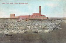 A24/ MONTANA Mt Postcard 1909 BILLINGS Sugar Factory NATIVE AMERICAN INDIAN