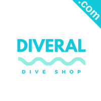 DIVERAL.com Catchy Short Website Name Brandable Premium Domain Name for Sale