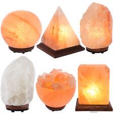 Himalayan Salt Lamp 100% Authentic Natural Crystal Pink Salt Lamp w/ Bulb & Plug