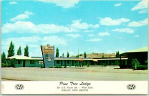 GALLUP, New Mexico ROUTE 66 Roadside Postcard PINE TREE LODGE Motel 1960s Unused