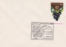 Poland postmark GRODZISK WLKP. - beer 1977