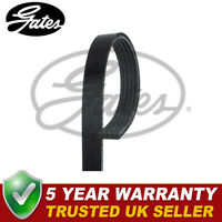 Gates V-Ribbed Belts Fits Hyundai i10 (2008-) i20 (2008-) 1.2 - 5PK1236SF