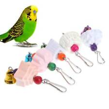 Parrot Teeth Grinding Toys Bird Squirrel Calcium Stone Flower Shape Chewing Bell