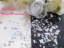 Arte en uñas Grueso * invernal * Navidad Copos De Nieve Estrella Hexagonal Brillo Spangle Pot