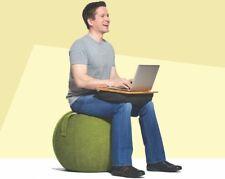 Ergonomic Ball Chair Ebay