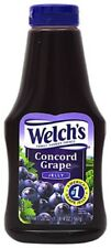 Welch's Concord Grape Jelly Squeezy Bottle 566g