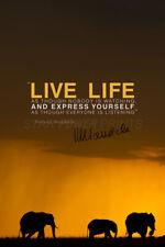Nelson Mandela Zitat-PHOTO PRINT POSTER-Pre signiert-Leben