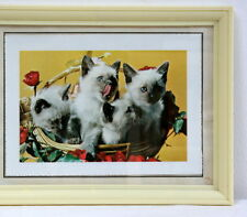 Cadre photo vintage chatons rétro kitsch 1950