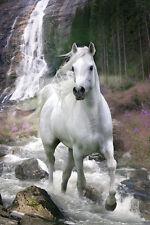 Bob Langrish - Waterfall POSTER 61x91cm NEW * White Horse