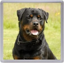 Rottweiler Coaster No 2 by Starprint