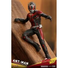 ANT-MAN PAUL RUDD from the ANT-MAN MOVIE 903697 Hot Toys 1:6 Figure