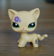 2'' Beige Cat Purple flower Kids Toys Green Eyes  Littlest Pet Shop LPS 1962