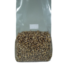 Sterilized Rye Berry Mushroom Substrate (2 one pound bags)