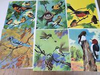 Jacob Bates Abbott BIRDS AT HOME Pictures Color Lithograph Prints Donohue 1930s