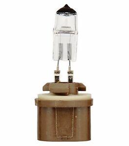 Eiko Precision 899 37.5W One Bulb Fog Light Replacement Plug Play Germany Stock