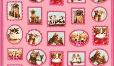 Robert Kaufman Hugs & Kisses by Avanti Press Inc AVT 15207 10 Pink Cotton Fab