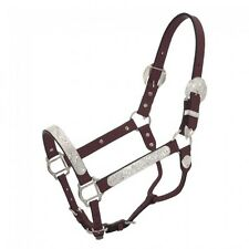 Silver Royal King Full Average Horse Show Halter Dark Oil Leather Lead Chain