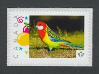 colourful  PARROT exotic bird Picture Postage Canada 2014 p76bd5/5