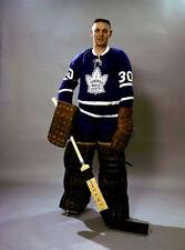 Terry Sawchuk Toronto Maple Leafs 8x10 Photo