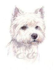 WEST HIGHLAND TERRIER.         3 Blank Dog greeting cards by Christine Groves