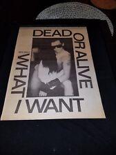 Dead Or Alive What I Want Rare Original Uk Promo Poster Ad Framed!