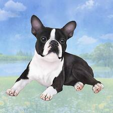 Boston Terrier (Laying) Tabletop Drink Coaster (1)