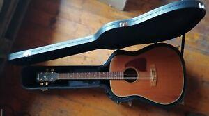 IBANEZ elektro-akustische Western-Gitarre im Koffer, modifiziert + Gurt + Kapo