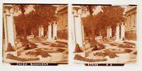 París Exposición Universal 1937 Jardin Botanico Placa Cristal Estéreo Positive