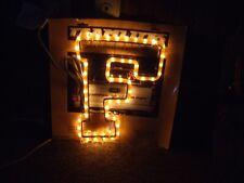 University of Florida Team Lighting