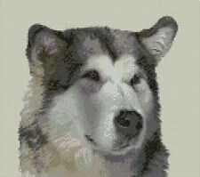 """Alaskan Malamute Dog Counted Cross Stitch Kit 10"""" x 9"""""""