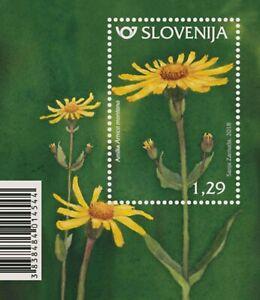 Slovenia 2018 * Flora - Mountain arnica - miniature sheet * MNH