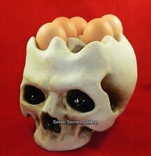 Egg Stand / Holder for 6 Eggs | Fantastic Human Skull Shape | New In