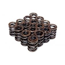 BLOX B SERIES VTEC DUAL VALVE SPRINGS FOR HONDA CIVIC INTEGRA B16 B18C TYPE R GS