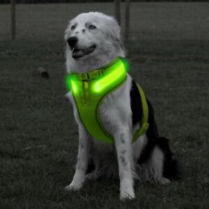 New Green A Line LED Dog Harness Light Up Adjustable Flashing Safety Belt Collar