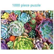 1000 Piece Succulent Spectrum Plants Puzzle Adult Children Holiday Gift Puzzles`