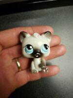 Littlest Pet Shop Magic Motion Persian Cat Authentic Lps